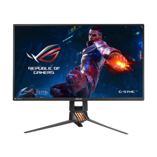 "Asus 24.5"" ROG Swift LED Gaming Monitor (PG258Q), 1920 x 1080, 1ms, HDMI, DP, Native 240Hz, G-SYNC, Lighting Effects, VESA"